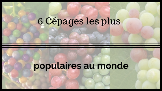 logo article six-cepages-plus-populaires-monde