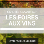 5 choses à savoir sur les foires aux vins
