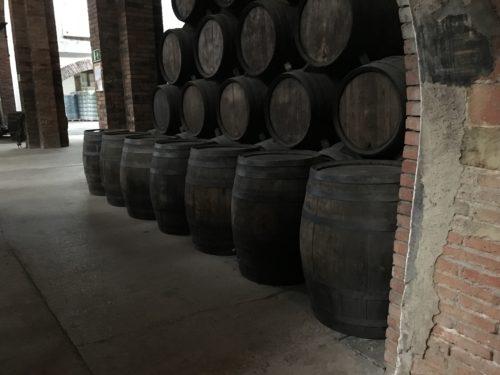 Fûts de vin dans une cave