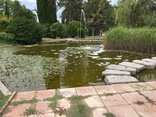 Bassin dans le parc Codorniu