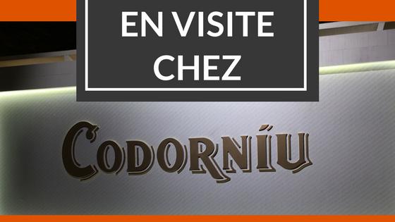 Logo d'article sur la visite de Codorniu