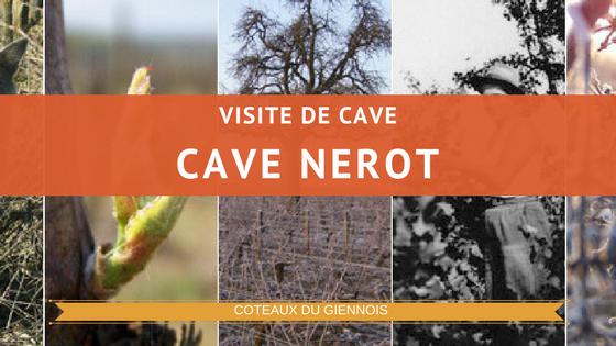 Visite de la cave Nerot dans le coteau du giennois