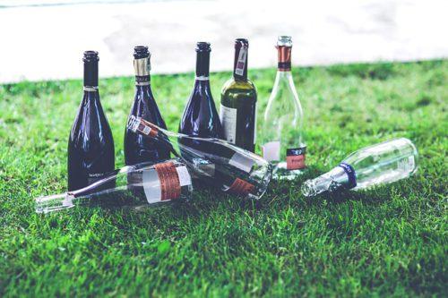 Bouteilles de vin vides sur pelouse au soleil