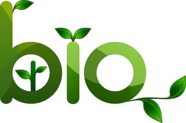 mot bio écrit avec des plantes