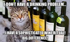 Lol cat sans problème d'alcool avec le vin