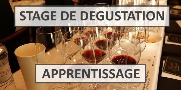 Formation au vin pour débutant : les stages œnologiques
