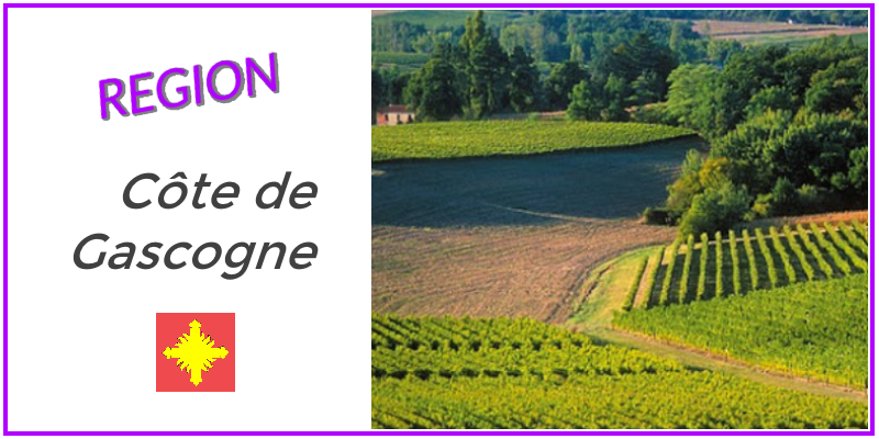 vin de l'iIGP Cote de Gascogne Armagnac